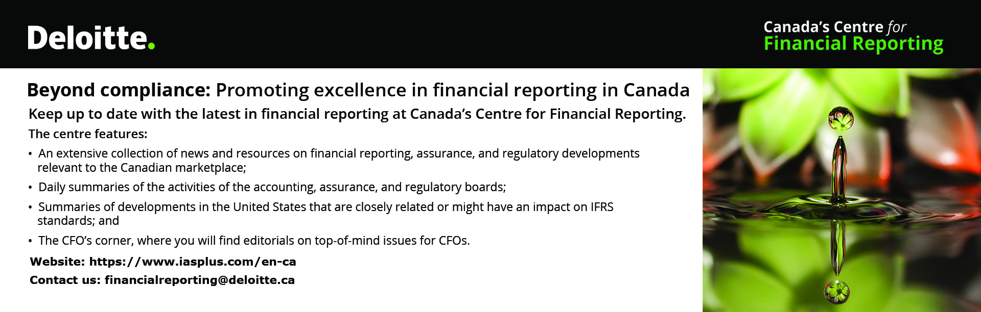 Deloitte - Beyond compliance: Promoting excellence in financial reporting in Canada